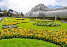 基奥植物园在春天,伦敦,英国 免版税库存照片