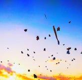 在下午天空日落的秀丽风筝 库存照片