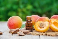 在一个小瓶子的杏子油 选择聚焦 库存照片