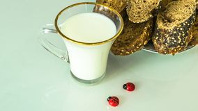 在一个杯子的牛奶在桌上用面包,烘干 免版税库存照片