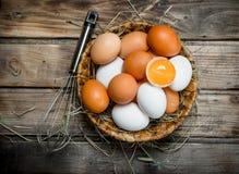 在一个篮子的鸡蛋与飞奔 免版税图库摄影
