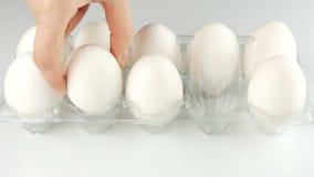 在一个透明塑料盘子的大白色鸡鸡蛋在白色背景 女性手在盘子投入了鸡蛋 股票录像