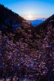 在一座山上面的淡紫色在日出 免版税库存照片