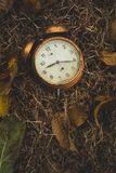 在叶子的老闹钟 库存照片