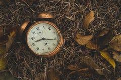 在叶子的老闹钟 免版税图库摄影