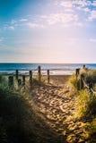 在含沙路的长的平衡的阴影与草芦苇和木岗位在导致一个美丽的海海湾的每边 库存图片