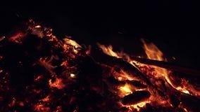 在壁炉的燃烧的煤炭在黑暗的背景的晚上 股票视频