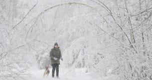 在夹克打扮的年轻美丽的白种人女孩妇女使用与混杂的品种狗小狗在斯诺伊的冬天森林里 股票录像