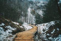 在多雪的木头的木台阶 库存图片