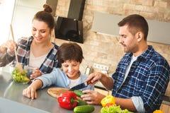 在家一起站立在厨房父亲陈列儿子的家庭切开菜,当愉快时母亲混合的沙拉 库存照片