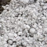 在地面上的雹子在雹暴,了不起的大小冰雹,冰雹以后估量与一枚更大的硬币 免版税库存图片