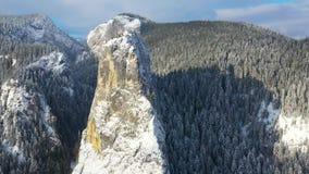 在冬天峡谷的寄生虫飞行 股票录像