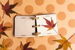在桌上的小笔记本和秋天叶子 免版税库存照片