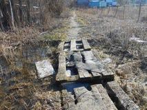 在水位高的小桥梁在春日 图库摄影