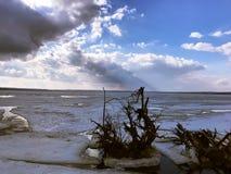 在河的断枝,推出从冰 图库摄影