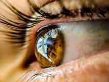 在流动照相机的宏观射击 通过您的眼睛探索这个世界秀丽  免版税库存照片