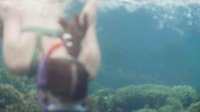 在海水的年轻女人游泳与面具和废气管和看对照相机 潜航的面具的画象妇女  股票视频