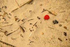 在海滩的塑料废物,红色盒盖 免版税库存照片