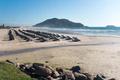 在海滩的许多椅子 普腊亚做Santinho,Florianà ³ polis,巴西 免版税库存图片