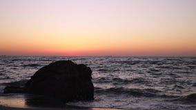 在海的美好的桃红色日落日出,完全安静,飞行海鸥 股票视频