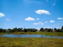 在湖边的晴朗的天气,好日子,天空蔚蓝,在水体的绿草旁边,湖,刷新 免版税图库摄影