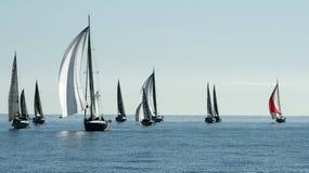 在戛纳海湾的帆船种族  免版税库存照片