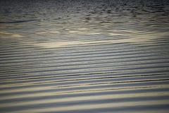 在日落期间的水波纹 库存图片