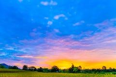 在日落的风景 库存图片