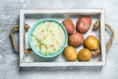 在碗的土豆泥 库存照片