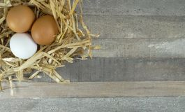 在秸杆巢的鸡鸡蛋与在木背景的粗麻布 图库摄影