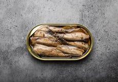 在罐子的罐装鱼 免版税库存照片