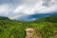 在热带山谷的五颜六色的彩虹雨、风景风景绿色森林和小河的在乡下 库存图片
