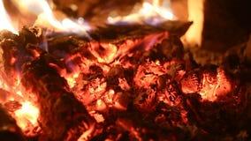 在炭烬的燃烧的firewoods在熔炉 股票录像