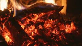 在炭烬的Firewoods在壁炉 股票录像