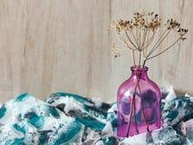 在瓶的装饰干燥枝杈 图库摄影