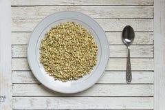 在白色板材的发芽的在白色桌上的荞麦和spood 库存图片