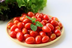 在白色背景,健康盘的新鲜的蕃茄 免版税库存图片