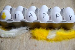 在白鸡蛋的愉快的消息 免版税库存照片