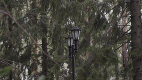 在街道的双重葡萄酒灯 灯笼街灯大烛台 影视素材