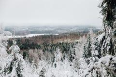 在芬兰观点的冬天从第二高峰在芬兰南部 免版税库存照片