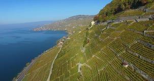 在葡萄园的飞行lavaux的瑞士 影视素材