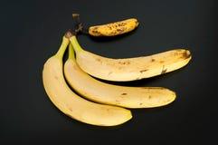 在黑背景和一个微型香蕉隔绝的顶视图三个大香蕉 免版税图库摄影