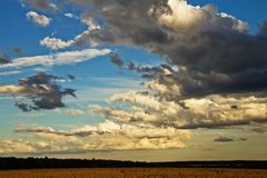 在雷暴前的天空在黄色领域 免版税库存照片
