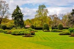 在Kew植物园,伦敦,英国里反弹 免版税库存图片