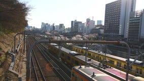 在Sotobori公园的樱花 公寓结构大厦大厦具体玻璃高日本现代住宅上升钢东京塔耸立 影视素材