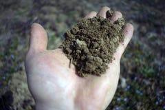 土壤供以人员手有模糊的背景 免版税图库摄影