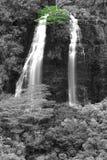 Ōpaekaʓ ein Wasserfall BW Stockbilder