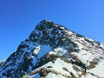 Åšwinica, pico de Åšwinica, na maneira à parte superior, imagem de stock royalty free