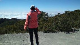 到达在山区的上面的年轻女性,站立在山顶部,手上升了,成功的了悟 股票视频