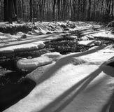 冬天小河在马里兰北部 免版税图库摄影